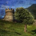 Castle by Joana Kruse