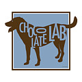 Chocolate Lab by Geoff Strehlow