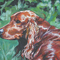 Irish  Setter by Lee Ann Shepard