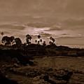 La Jolla Sunset by Bridgette Gomes