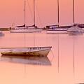 Misty Morning Osterville Cape Cod by Matt Suess