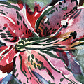 Pink Day Lily by Mindy Newman