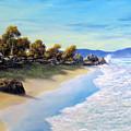 Surf Surge by John Cocoris