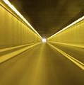The Light by Julie Niemela