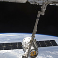 The Spacex Dragon Cargo Craft by Stocktrek Images