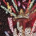 2010 New Year H076 by Yoshiki Nakamura