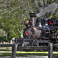 267 - Roaring Camp Train No 7 Hdr by Chris Berry