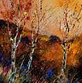 3 Poplars by Pol Ledent