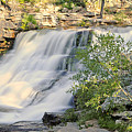 Upper Provo River Falls  by Dennis Hammer