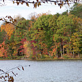 3008-fall Waterscape by Martha Abell