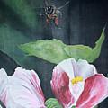 Busy Bee by Justin Hiatt