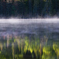 Summer Morning by Mircea Costina Photography