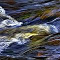The Flow by Steve Harrington