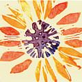 60's Sunflower by Annie Alexander