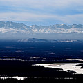 Denali Park - Alaska by Galeria Trompiz