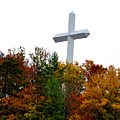 A Cross In Tennessee by Brittany Horton