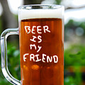 A Friendly Beer by David Lee Thompson