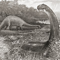 A Group Of Brontosaurs, Or Thunder by Ken Welsh
