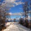 A Kootenai Wildlife Refuge Winter by Lee Santa