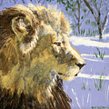 A Lion In Winter by Dy Witt