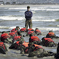 A Navy Seal Instructor Assists Students by Stocktrek Images