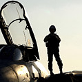 A Pilot Prepares To Enter His F-14b by Stocktrek Images