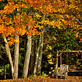 A Romantic Autumn Spot In Inlet by David Patterson