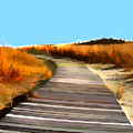Abstract Beach Dune Boardwalk by Elaine Plesser