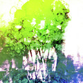 Abstract Trees In The Everglades by Arline Wagner