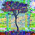 Acacia Tree by Colette Panaioti