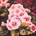African Violets by Jordana Sands