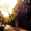 Afternoon Sunlight On A New York City Street by Vivienne Gucwa