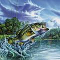 Airborne Bass by Jon Q Wright
