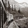 Alaskan Train by Will Edwards