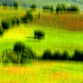 All Green by Robert Shahbazi