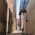 Alley W Guy Reading by Anita Burgermeister