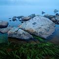 Alpine Atmosphere by Idaho Scenic Images Linda Lantzy
