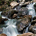 amicalola falls Ga by David Campbell