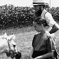 Amish Girl And Pony by Eric  Schiabor