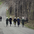 Amish People Visiting Middle Creek by Ira Block
