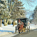 Amish Winter by David Arment