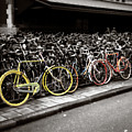Amsterdam Bikes by Wayne King