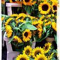 Amsterdam Sunflowers by Joan  Minchak
