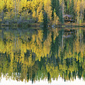 An Autumn View Of A Cabin Reflected by Rich Reid