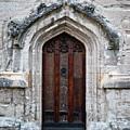 Ancient Door by Douglas Barnett