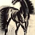 Andalusian Colt by Jarmo Korhonen aka Jarko