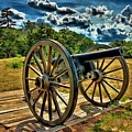 Andersonville Cannon by Tommy Anderson