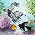 Angel Fish by JoLyn Holladay