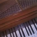 Anita's Piano 1 by Anita Burgermeister