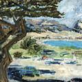 Apollo Bay by Joan De Bot